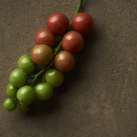 Vegetable13